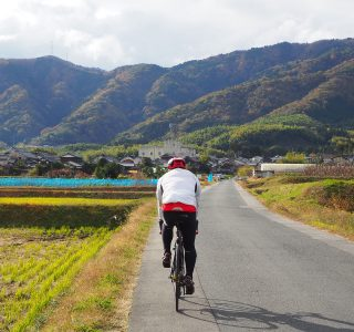 洛西・大原野の田園風景を走る参加者